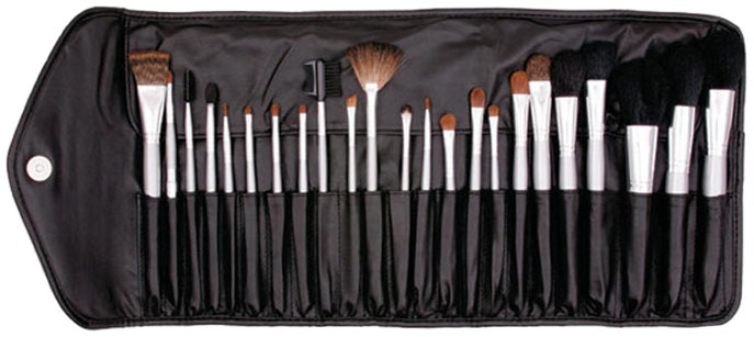 Professional Platinum Brush Set